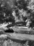 welles-bridge-vertical_bw-1