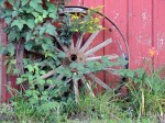 wheel-at-cailies-farm